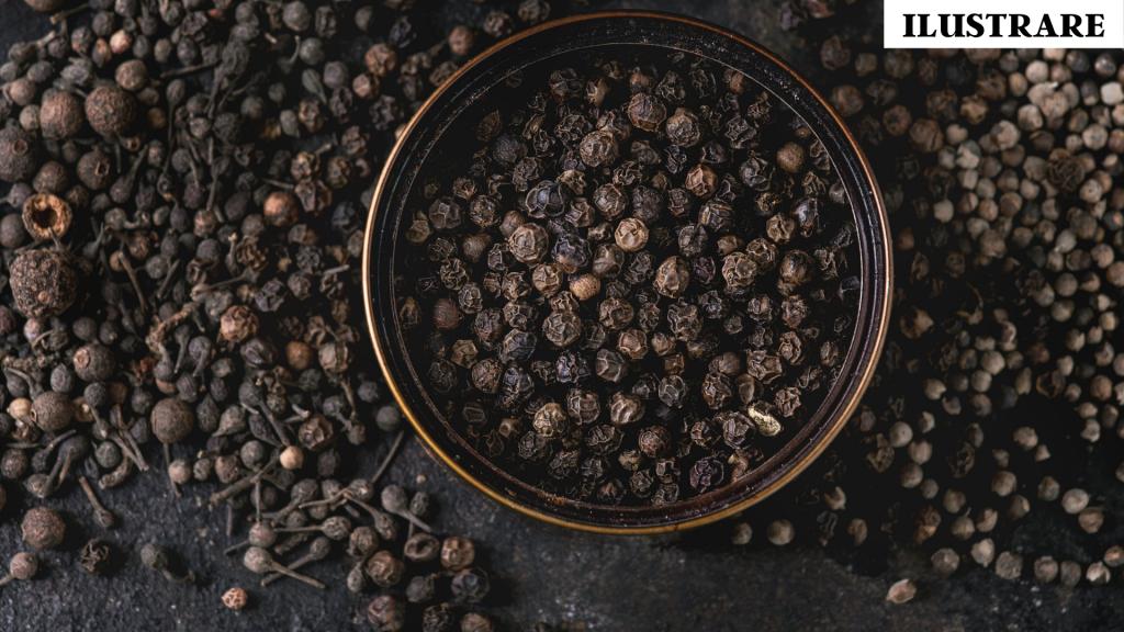 Top 10 condimente piper negru